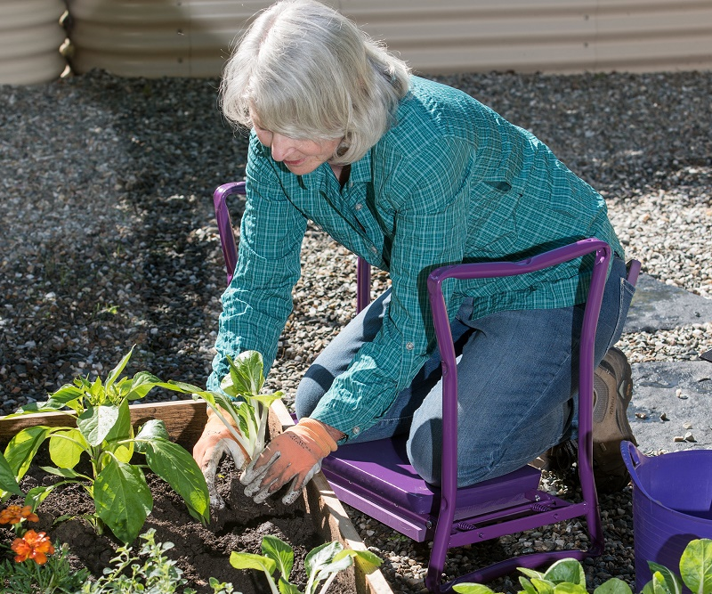 Specialist gardening tools can help you avoid back pain when gardening. The House Clinics, Bristol